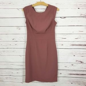 The Limited Career Dress Taupe Size 2 Tall